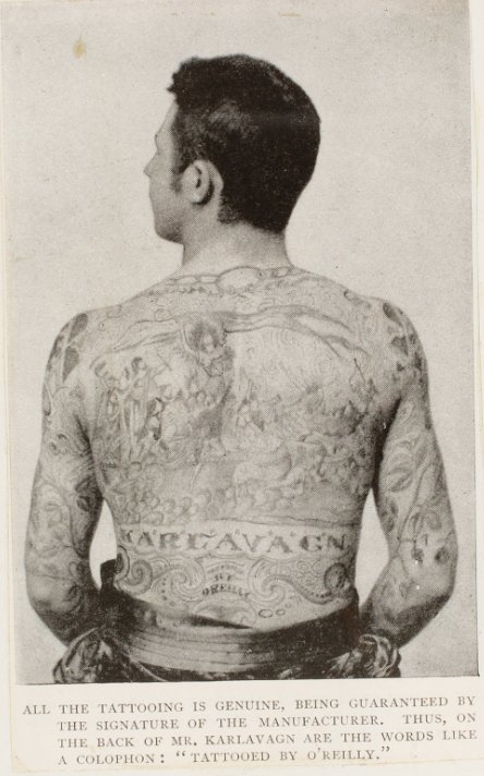 Karlavagn, Tattooed by O'Reilly. The Illustrated American. Nov 8, 1890. pg. 365. Print.